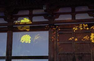 大泉洋、高畑充希、三浦春馬さんの『こんな夜更けにバナナかよ』前田哲監督がトークショー